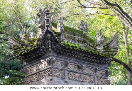 Körül óriás vad liba pagoda esős Stock fotó © prill