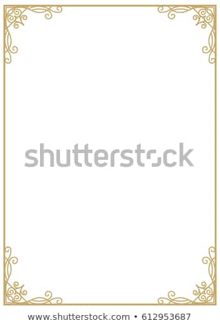 vertical metal frame isolated on white stock photo © tashatuvango