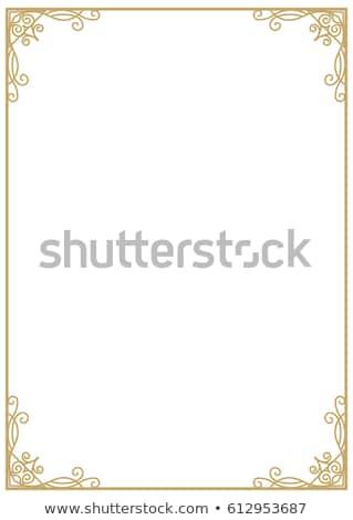 Vertical Metal Frame Isolated on White. Stock photo © tashatuvango