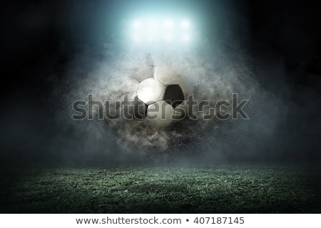 football flies in goalkeeper gate stock photo © ssuaphoto