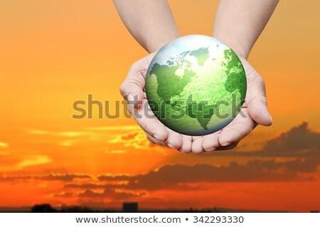 Meisje wereldbol bonsai hand wereld Stockfoto © photography33
