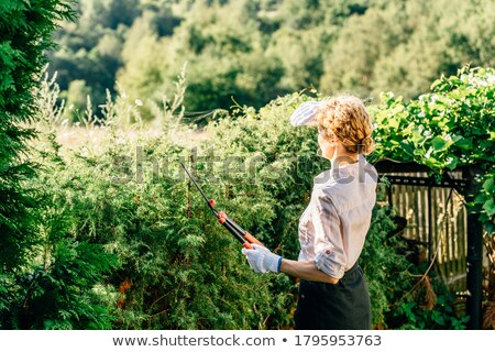 Blond manual worker with cutters Stock photo © photography33