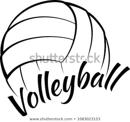 Volleyball Vector Image stock photo © chromaco