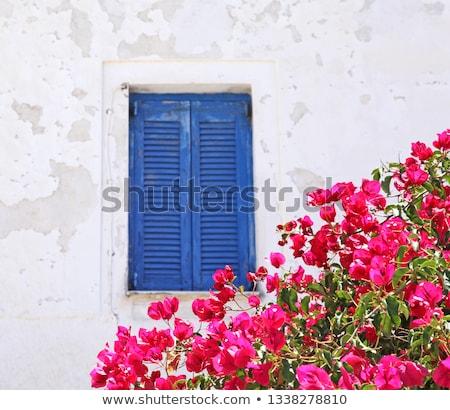 青 · 窓 · ギリシャ · 白 · 建物 · 家 - ストックフォト © ElinaManninen