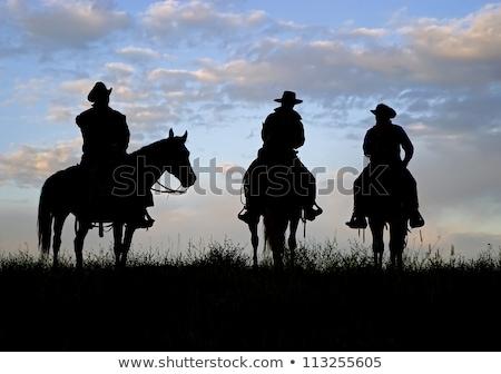 Cowboy sexy amerykański zachód lata piersi Zdjęcia stock © markhayes