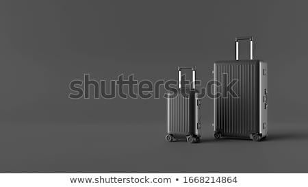 набор иконки пляж свет лет поезд Сток-фото © Filata