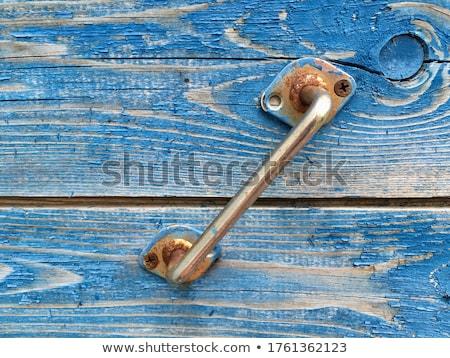 素朴な 金属 ドア ゴシック ストックフォト © shanemaritch