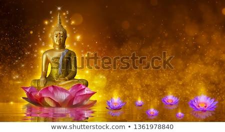 sessão · dourado · estátua · anjo · topo · histórico - foto stock © luckyraccoon