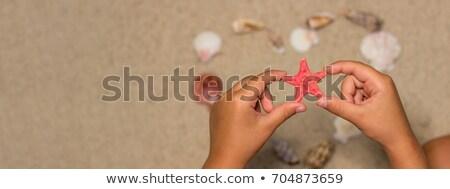 mãos · mar · símbolos · sol · creme - foto stock © natalinka