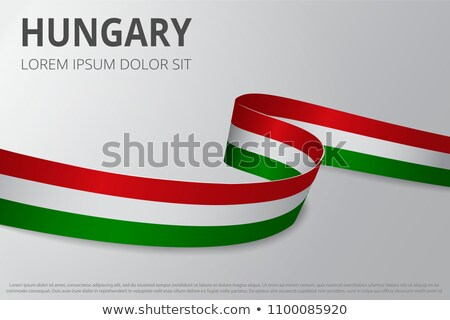 Ribbon banner - hungarian flag Stock photo © StockwerkDK