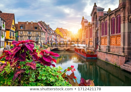 Frame House in Colmar, France Stock photo © tepic