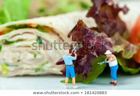 Tiny people cutting salad Stock photo © Kirill_M