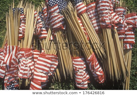 Stock photo: Miniature Flag of Los Angels California