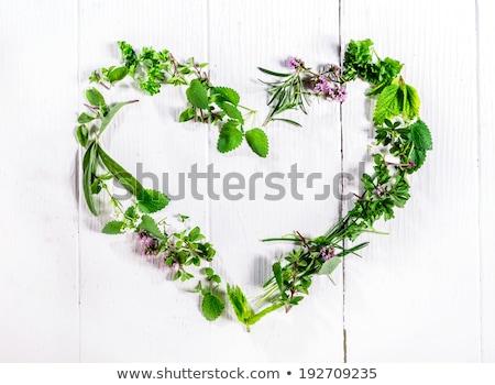 Herbs as heart Stock photo © armin_burkhardt