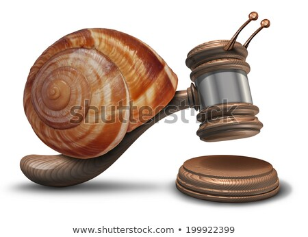 Slow Justice Stock photo © Lightsource