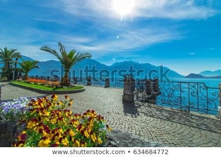 Passeio público lago Itália céu flores água Foto stock © artjazz