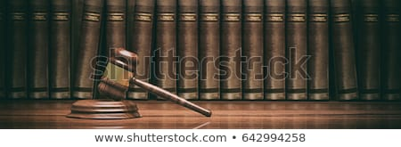 Law book with law student or lawyer in the background Stock photo © Farina6000