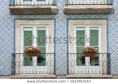 Francese balcone fiori casa rosso Francia Foto d'archivio © ivonnewierink