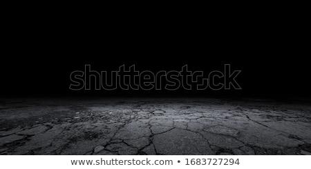 cracked gray ground stock photo © entazist