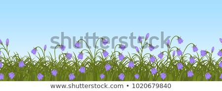 Stock photo: Grass and Sky — Seamless