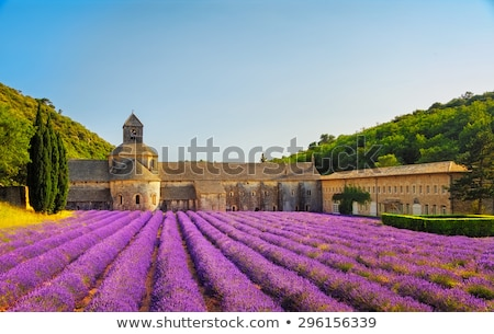 Senanque abbey, Provence, France Stock photo © phbcz