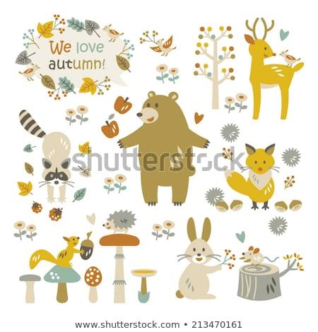 Wasbeer bloei boom grijs Stockfoto © artibelka