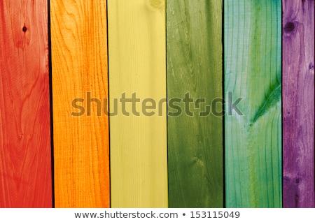 Rainbow · terrazza · view · verde · campi - foto d'archivio © dolgachov