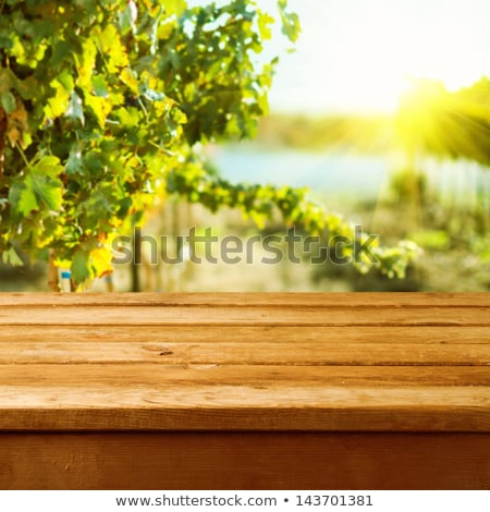 grape leaves over wooden vintage background stock photo © anna_om