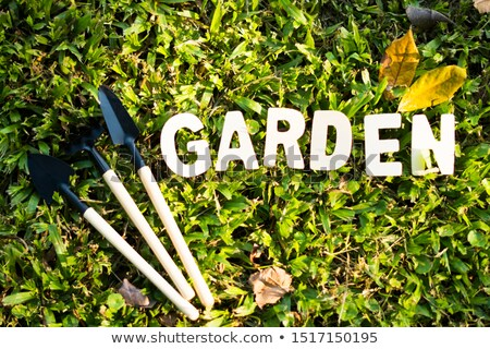 Garden Word Means Gardens Lawns And Gardening Stock photo © stuartmiles