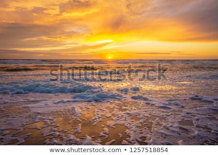 Sunrise Middle Head Beach Stock photo © lovleah