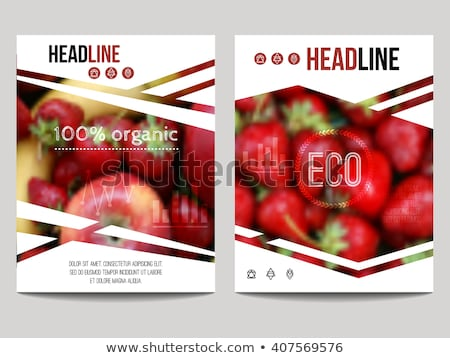 Card template design with vegetables  Stock photo © bluering