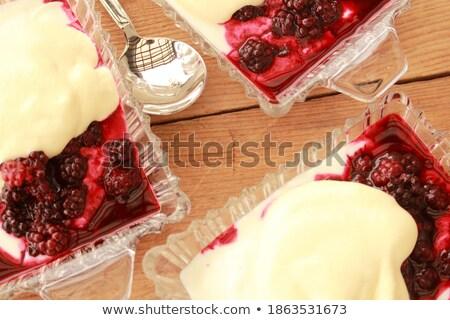 BlackBerry yogourt pourpre tasse illustration alimentaire Photo stock © bluering