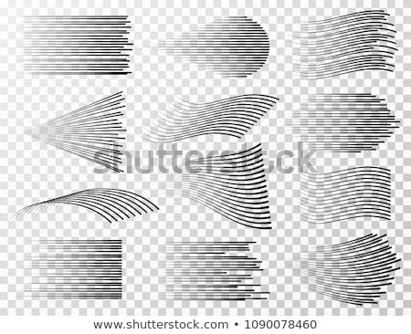 vektör · model · siyah · tek · renkli - stok fotoğraf © sidmay