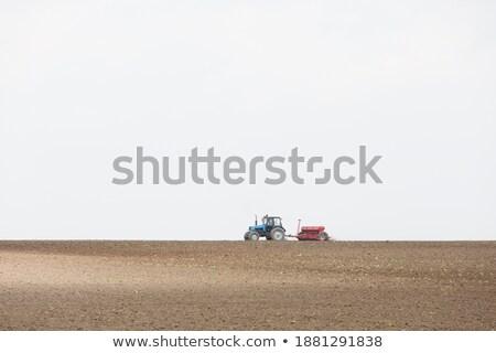 Harvesting corn crop field. Combine harvester working on plantat Stock photo © stevanovicigor