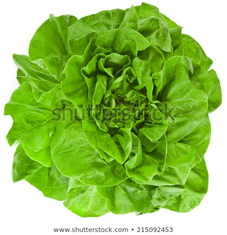 Fresh green curly Lettuce salad background. Top view Stock photo © Virgin