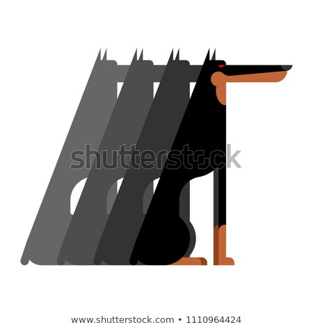 Doberman Flock dog protector. Pet Vector illustration Stock photo © MaryValery