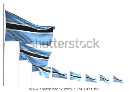 Botswana flag isolated on white Stock photo © daboost
