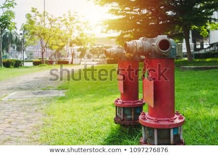 Brass City fire hydrant closeup Stock photo © bobkeenan