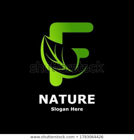 Zarif logo tasarımı şablon modern kozmetik Stok fotoğraf © ivaleksa