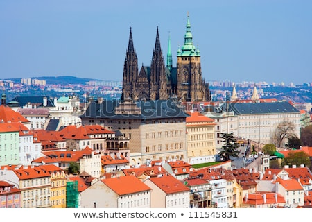 st vitus cathedral and roofs stock photo © givaga