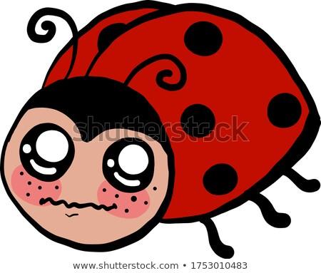 Scared Cartoon Ladybug Stock photo © cthoman