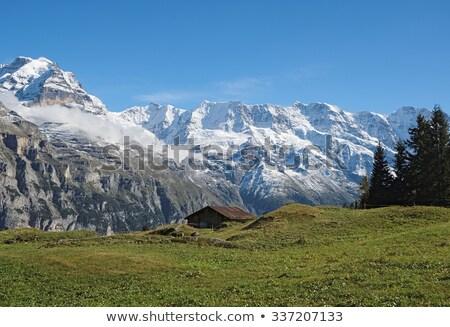 gloria in a mountain village in summer stock photo © kotenko