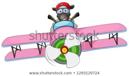 Birka lovaglás repülőgép illusztráció terv háttér Stock fotó © colematt