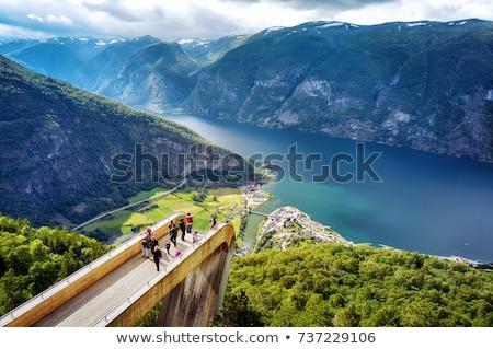 Beautiful Nature Norway Stegastein Lookout. Stock photo © cookelma