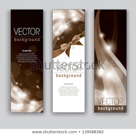 élégant ondulés vertical bannières modèle affaires Photo stock © SArts