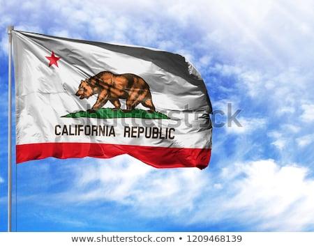 Bandeira Califórnia elementos camadas Foto stock © nazlisart
