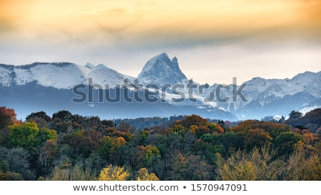 Autumn in the Pyrenees Stock photo © pedrosala