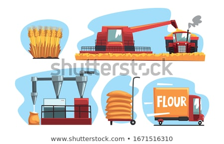 Set of food products from wheat and flour Stock photo © netkov1
