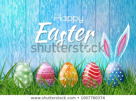 Zdjęcia stock: Wesołych · Świąt · kartkę · z · życzeniami · jaj · Easter · bunny · projektu · szczęśliwy