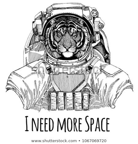 Tigre astronauta carattere illustrazione felice tecnologia Foto d'archivio © colematt